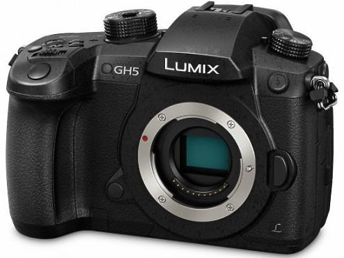 Panasonic Lumix DMC-GH5 side