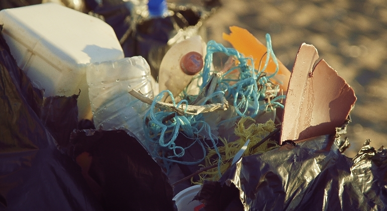 Rubbish and plastic collected