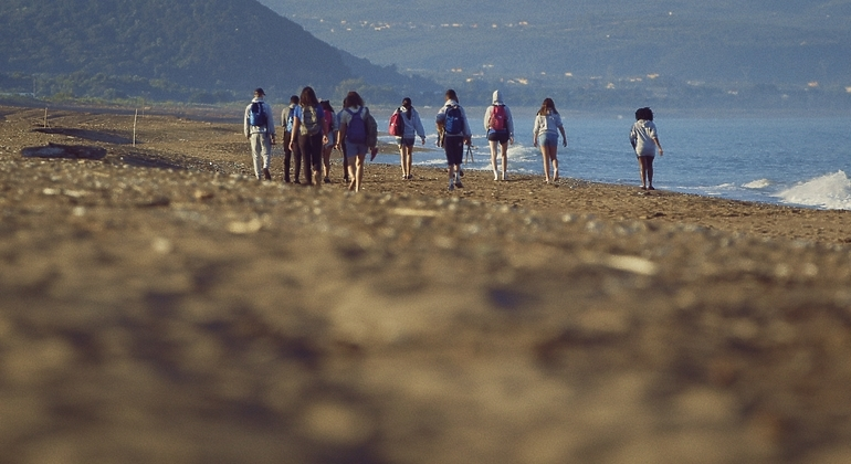 Long lens shot of young people on the beach